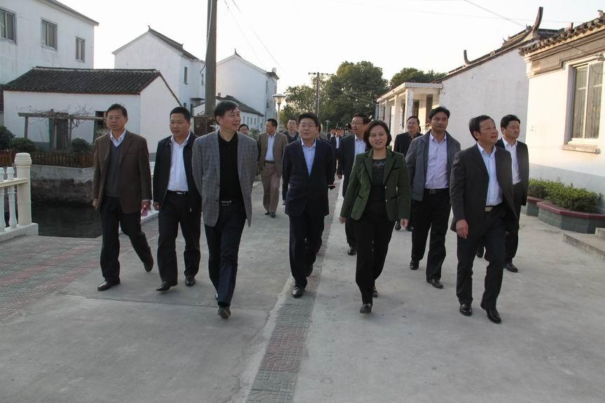 苏州市纪委副书记,监察局局长刘费加视察横泾街道新路